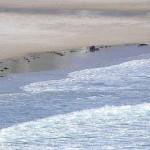 Strand Kanaaleiland Jersey