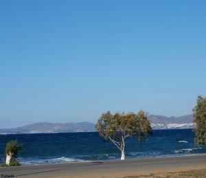 Langs de kust van Kos