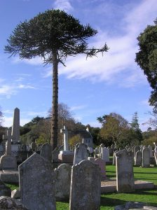 Het kerkhof van St. Brelade