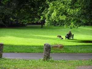 park/parc