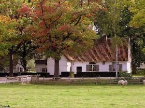 boerderij/farm