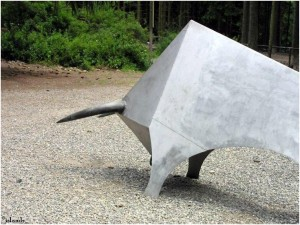 stier/bull