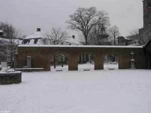 sneeuw/snow