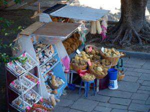 Straatwinkel met natuursponzen
