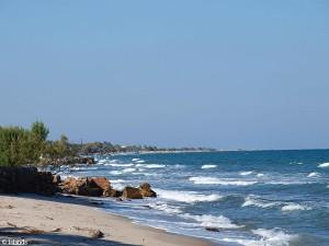 strand/beach