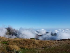 In de bergen van Madeira