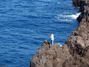 vissen/fishing