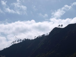 bergen/mountains