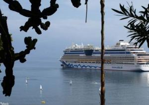 cruiseschip/cruiseliner