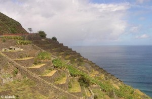 terrassen/terraces