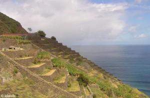 terrassen op Tenerife