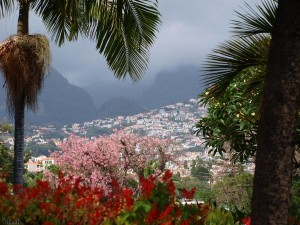 Funchal - Madeira