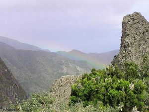 La Gomera - In den Bergen