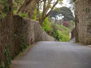 Landstrasse auf Guernsey