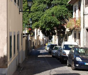 Die Altstadt von Funchal