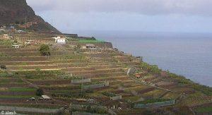 Terrassen auf Teneriffa